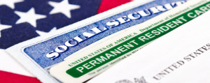 business immigration law